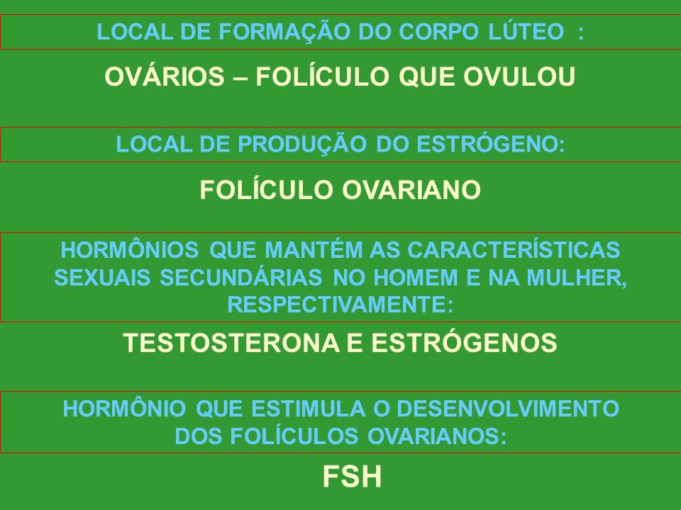 FSH OVÁRIOS – FOLÍCULO QUE OVULOU FOLÍCULO OVARIANO