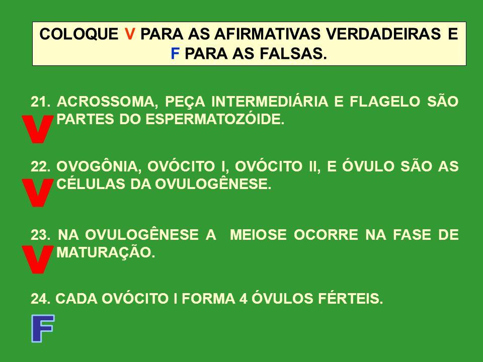 COLOQUE V PARA AS AFIRMATIVAS VERDADEIRAS E F PARA AS FALSAS.