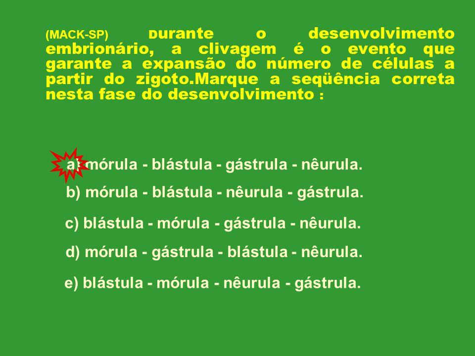 a) mórula - blástula - gástrula - nêurula.