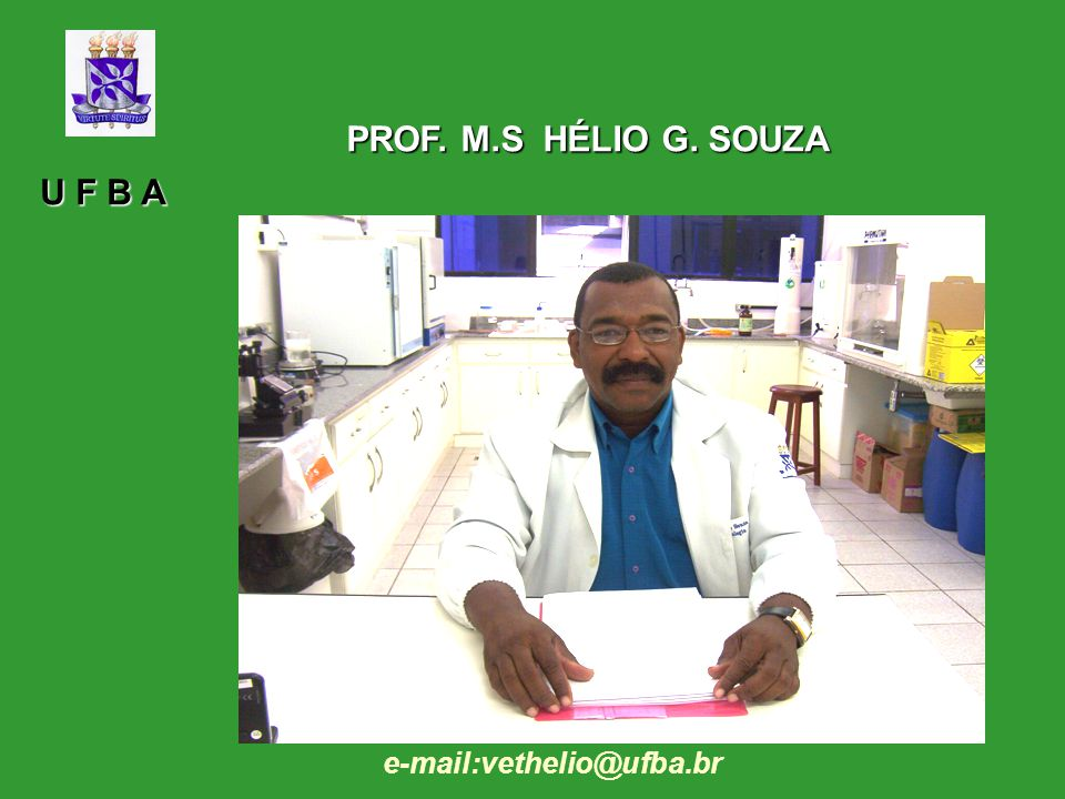 PROF. M.S HÉLIO G. SOUZA U F B A e-mail:vethelio@ufba.br