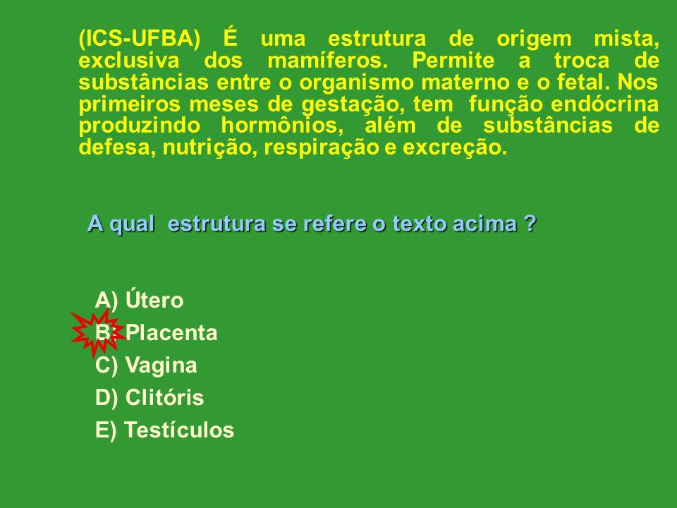 (ICS-UFBA) É uma estrutura de origem mista, exclusiva dos mamíferos