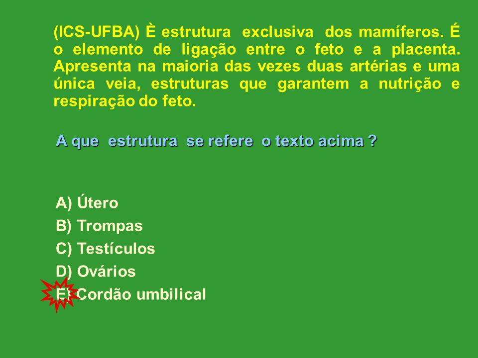 (ICS-UFBA) È estrutura exclusiva dos mamíferos