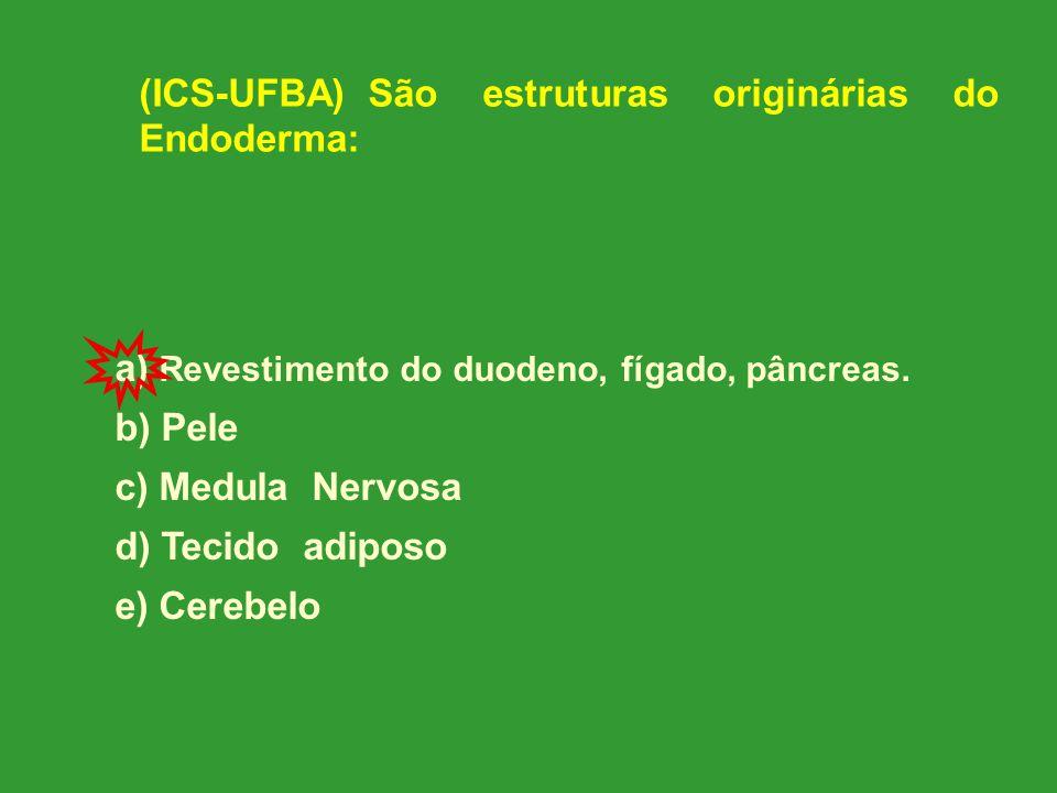 (ICS-UFBA) São estruturas originárias do Endoderma: