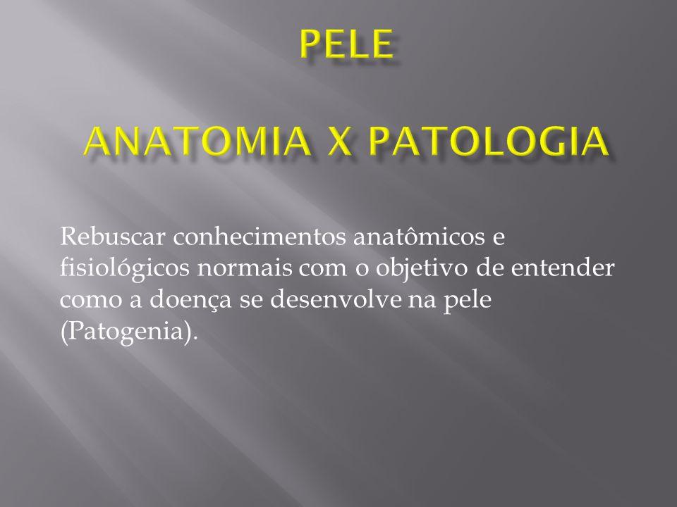 PELE Anatomia X Patologia