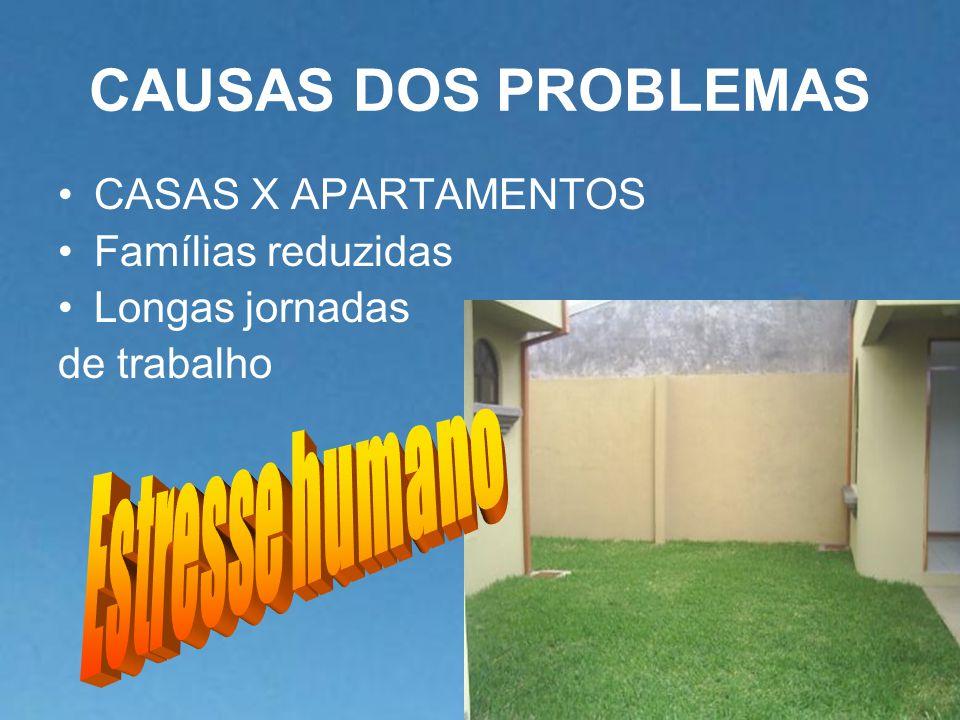 CAUSAS DOS PROBLEMAS Estresse humano CASAS X APARTAMENTOS