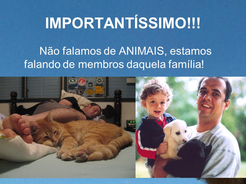 IMPORTANTÍSSIMO!!! Não falamos de ANIMAIS, estamos falando de membros daquela família!