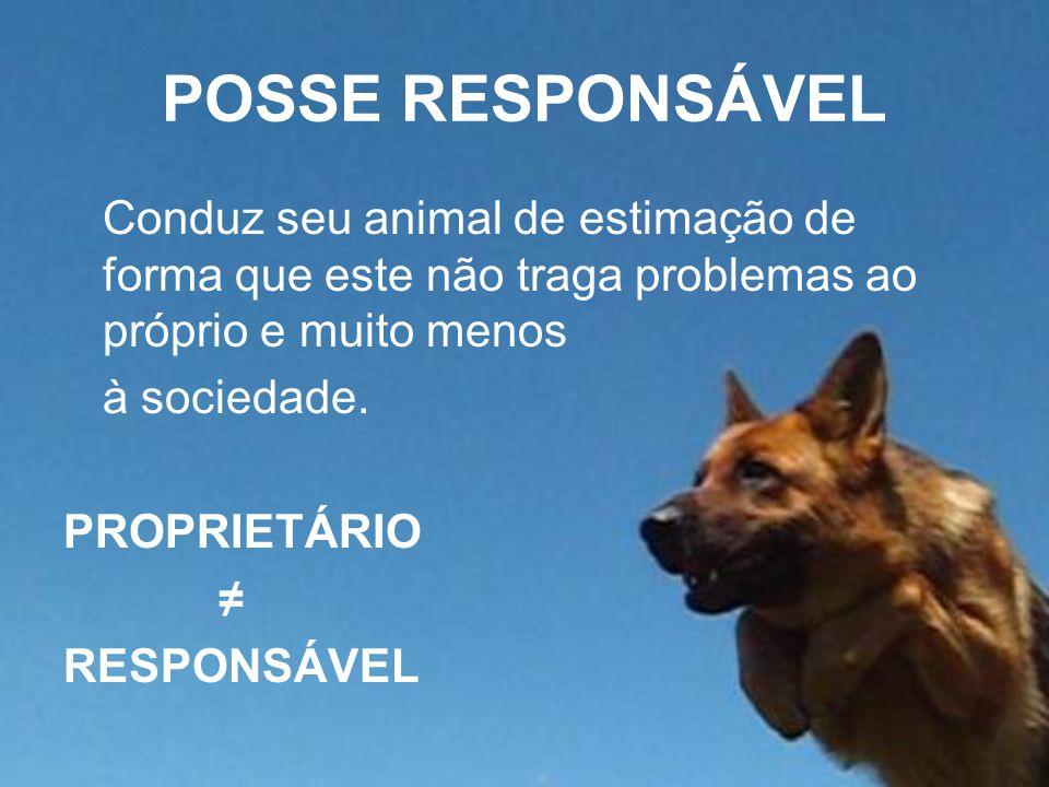 POSSE RESPONSÁVEL Conduz seu animal de estimação de forma que este não traga problemas ao próprio e muito menos.