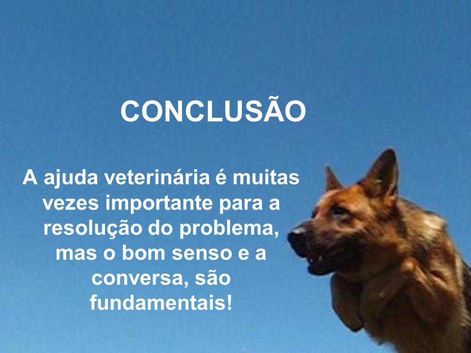 CONCLUSÃO A ajuda veterinária é muitas vezes importante para a resolução do problema, mas o bom senso e a conversa, são fundamentais!