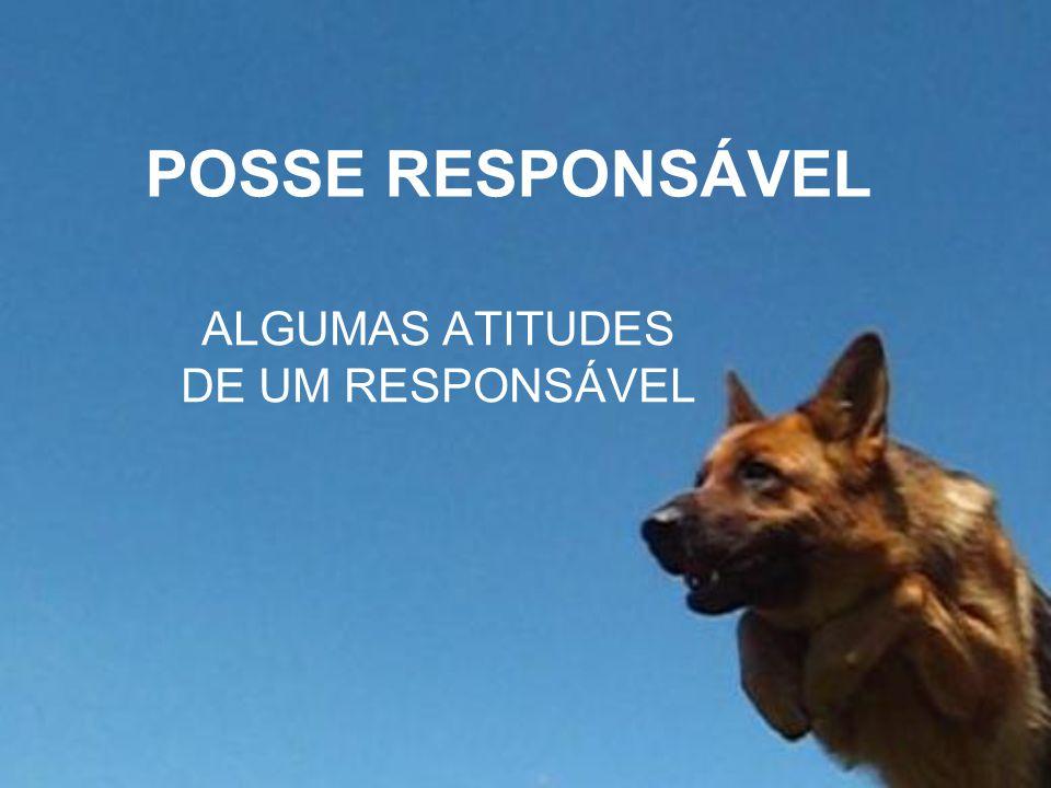 ALGUMAS ATITUDES DE UM RESPONSÁVEL