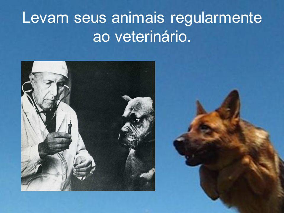 Levam seus animais regularmente ao veterinário.