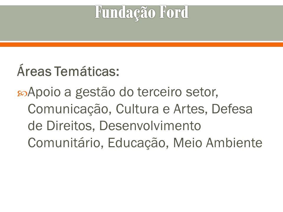 Fundação Ford Áreas Temáticas: