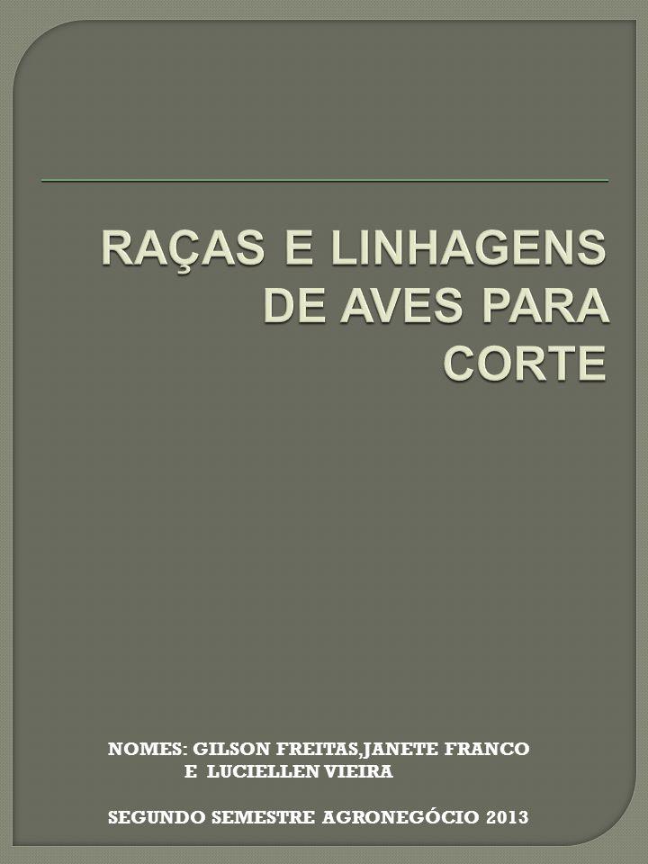 RAÇAS E LINHAGENS DE AVES PARA CORTE