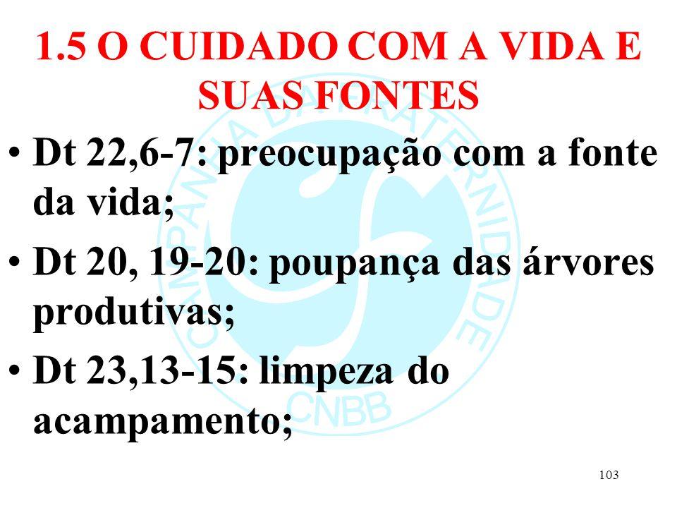 1.5 O CUIDADO COM A VIDA E SUAS FONTES