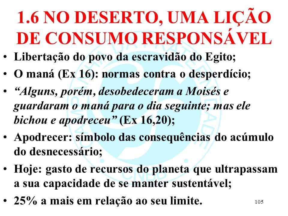 1.6 NO DESERTO, UMA LIÇÃO DE CONSUMO RESPONSÁVEL