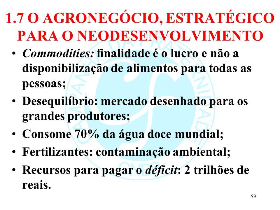 1.7 O AGRONEGÓCIO, ESTRATÉGICO PARA O NEODESENVOLVIMENTO