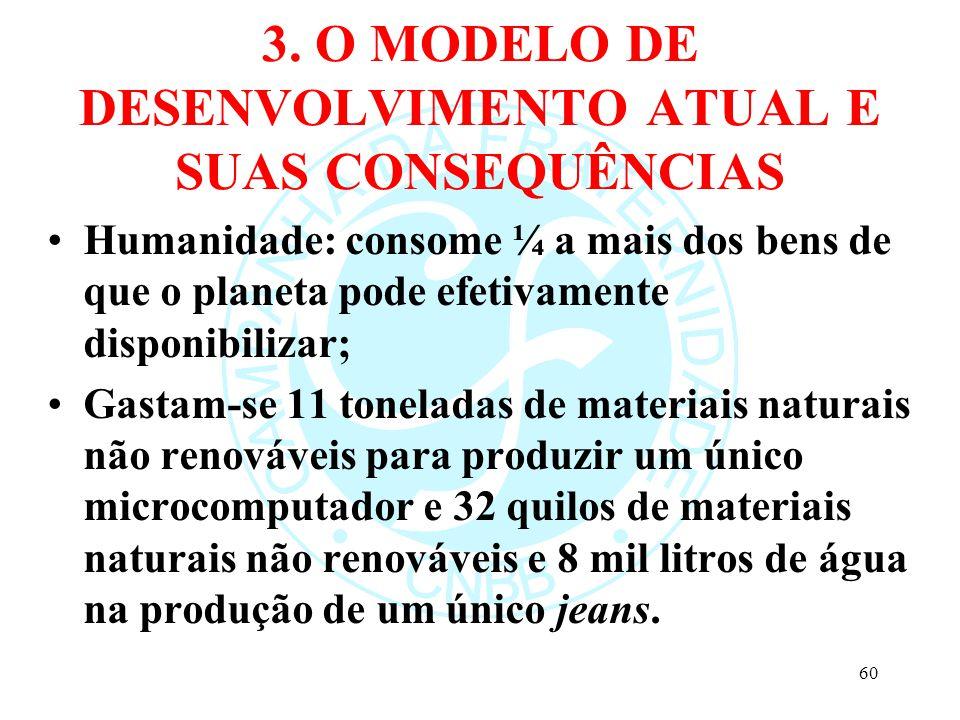 3. O MODELO DE DESENVOLVIMENTO ATUAL E SUAS CONSEQUÊNCIAS