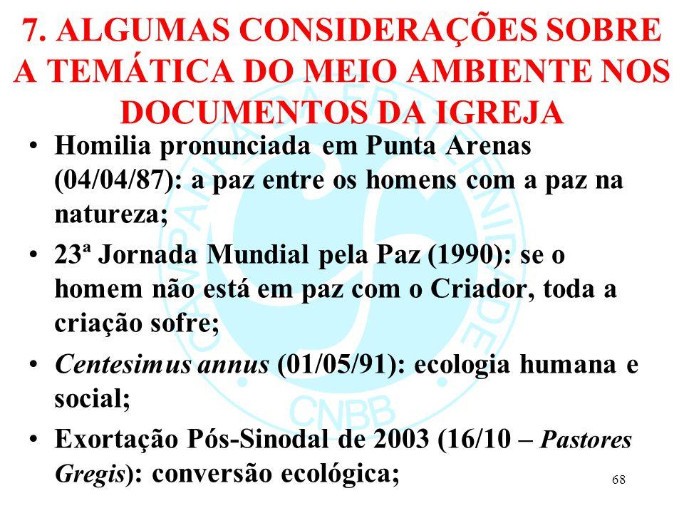 7. ALGUMAS CONSIDERAÇÕES SOBRE A TEMÁTICA DO MEIO AMBIENTE NOS DOCUMENTOS DA IGREJA