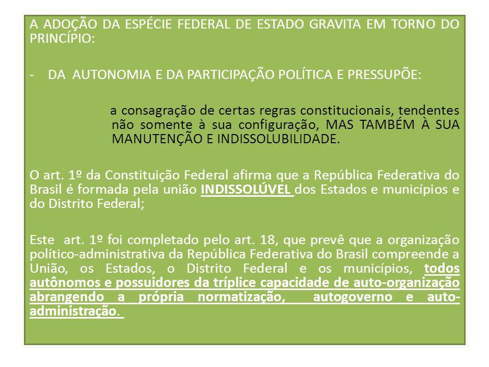 A ADOÇÃO DA ESPÉCIE FEDERAL DE ESTADO GRAVITA EM TORNO DO PRINCÍPIO: