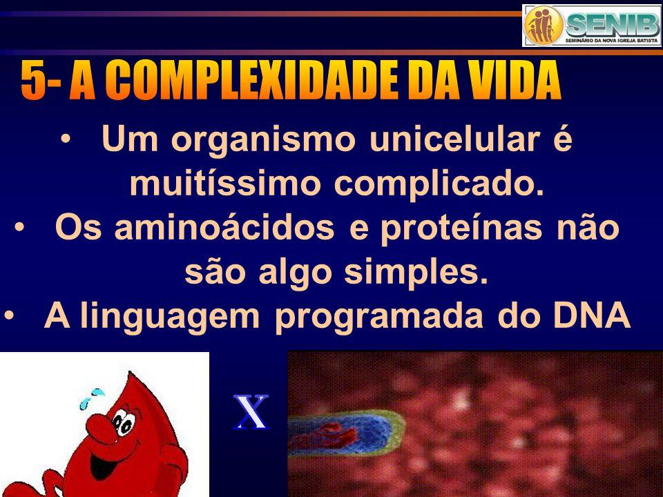 5- A COMPLEXIDADE DA VIDA