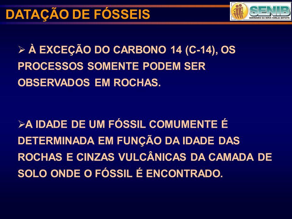 DATAÇÃO DE FÓSSEIS À EXCEÇÃO DO CARBONO 14 (C-14), OS PROCESSOS SOMENTE PODEM SER OBSERVADOS EM ROCHAS.