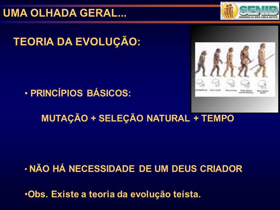 UMA OLHADA GERAL... TEORIA DA EVOLUÇÃO: PRINCÍPIOS BÁSICOS: