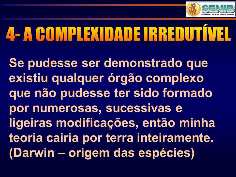 4- A COMPLEXIDADE IRREDUTÍVEL