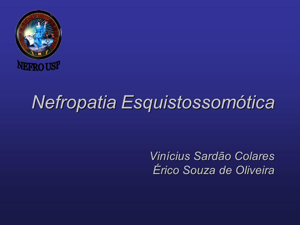 NEFRO USP Nefropatia Esquistossomótica Vinícius Sardão Colares Érico Souza de Oliveira