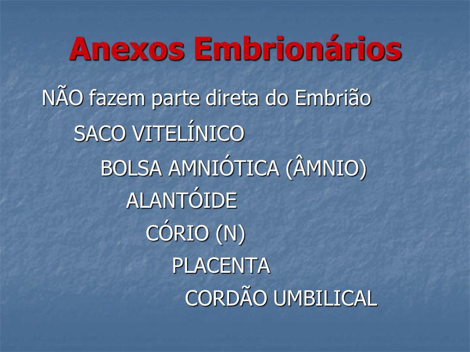 Anexos Embrionários NÃO fazem parte direta do Embrião SACO VITELÍNICO