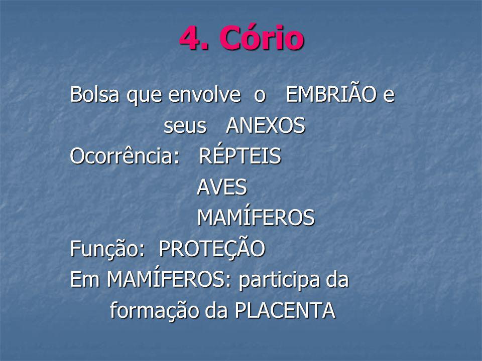 4. Cório Bolsa que envolve o EMBRIÃO e seus ANEXOS Ocorrência: RÉPTEIS