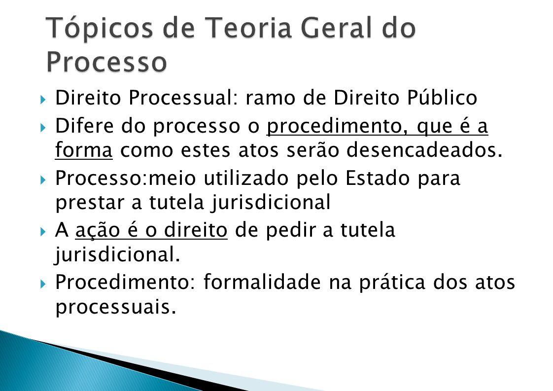 Tópicos de Teoria Geral do Processo