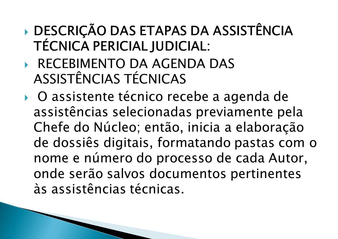 DESCRIÇÃO DAS ETAPAS DA ASSISTÊNCIA TÉCNICA PERICIAL JUDICIAL: