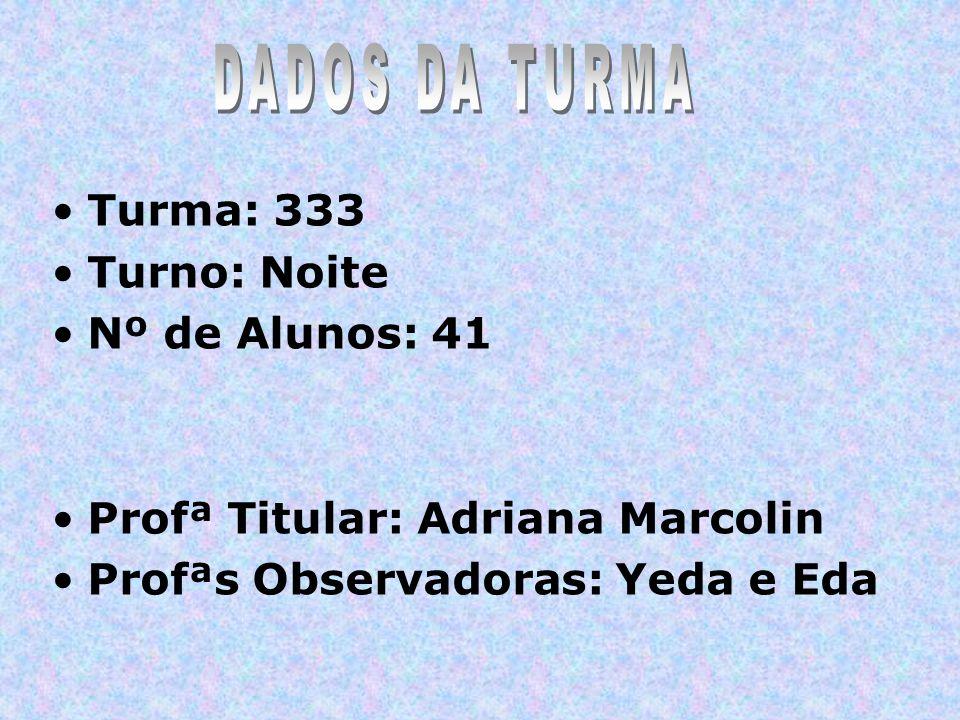 DADOS DA TURMA Turma: 333 Turno: Noite Nº de Alunos: 41