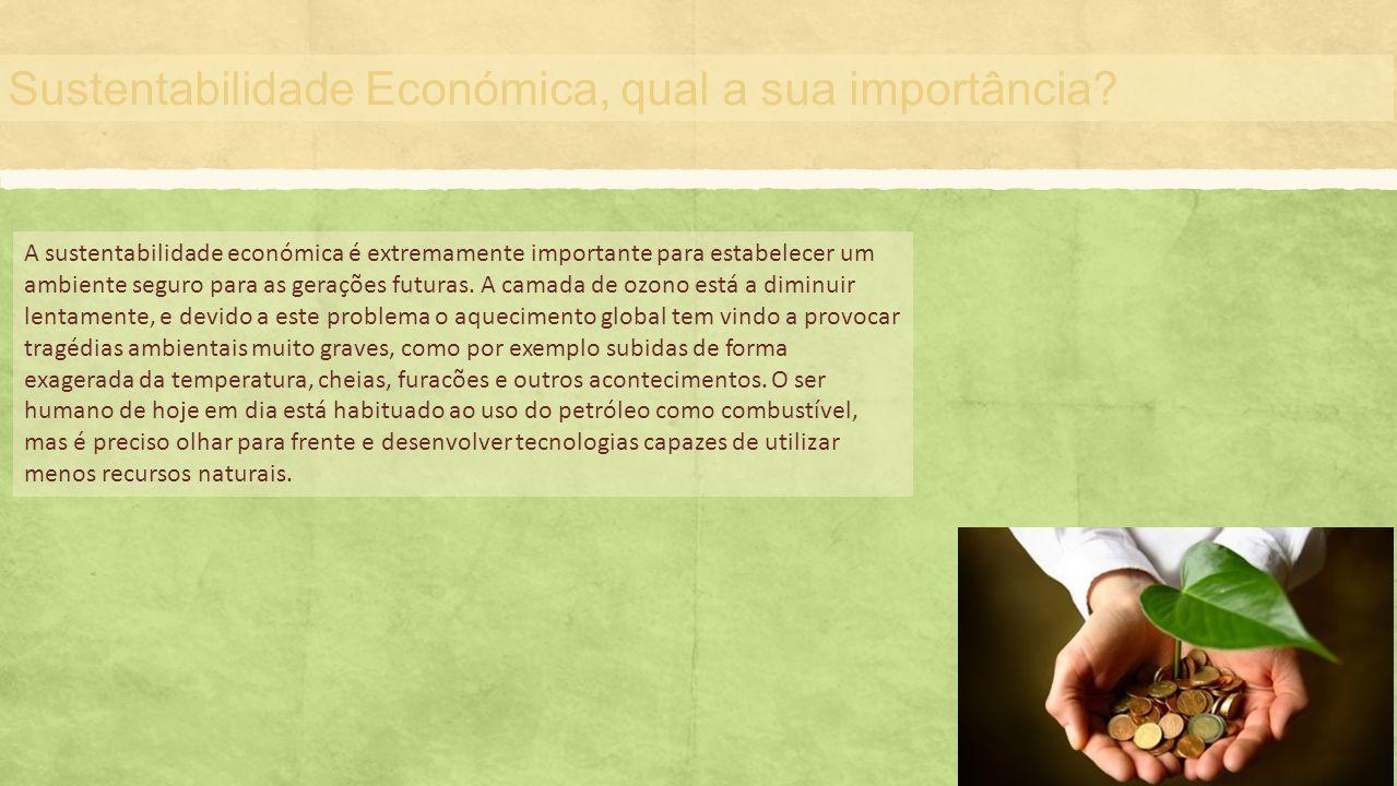 Sustentabilidade Económica, qual a sua importância