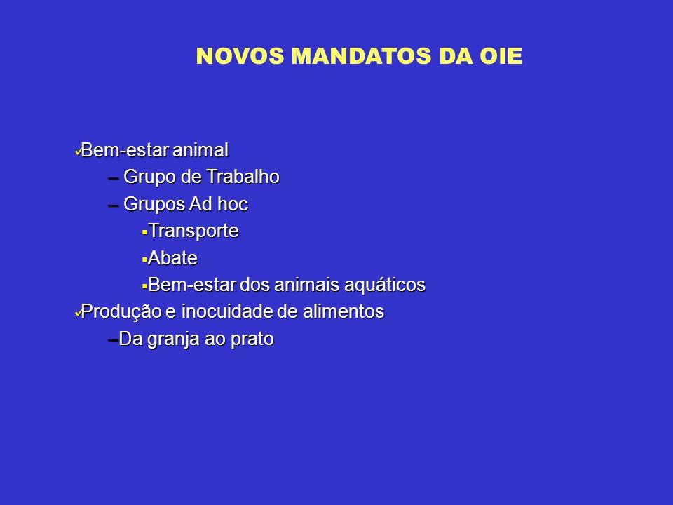 NOVOS MANDATOS DA OIE Bem-estar animal Grupo de Trabalho Grupos Ad hoc