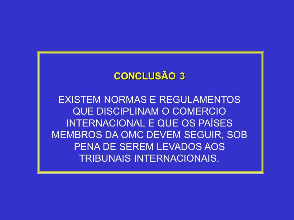 CONCLUSÃO 3
