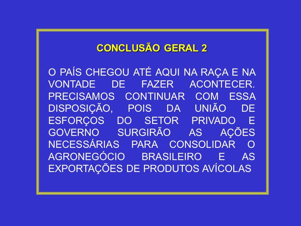 CONCLUSÃO GERAL 2