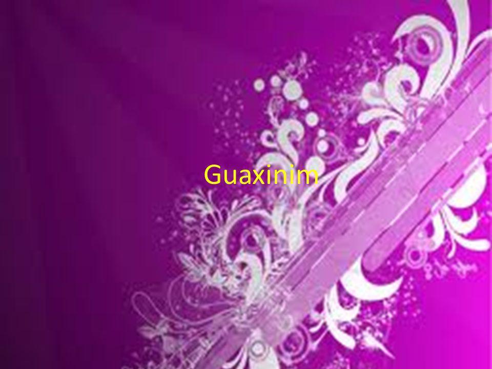 Guaxinim
