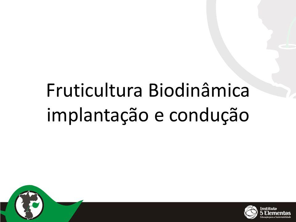 Fruticultura Biodinâmica implantação e condução