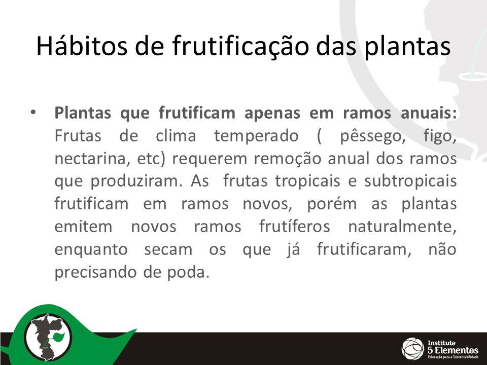 Hábitos de frutificação das plantas