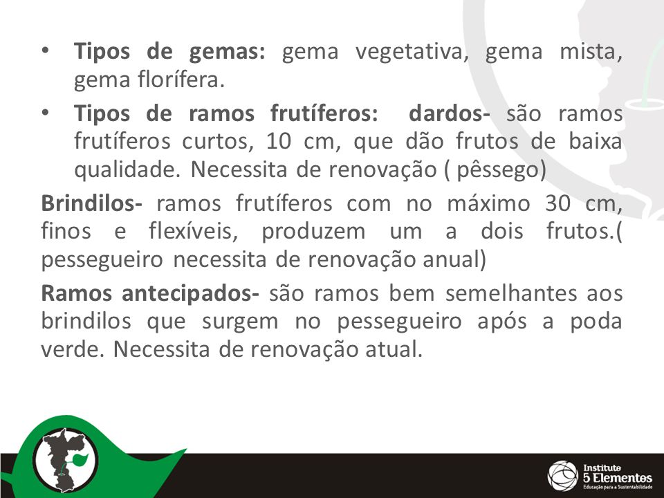 Tipos de gemas: gema vegetativa, gema mista, gema florífera.