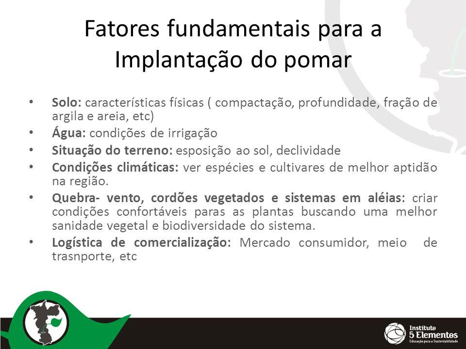 Fatores fundamentais para a Implantação do pomar