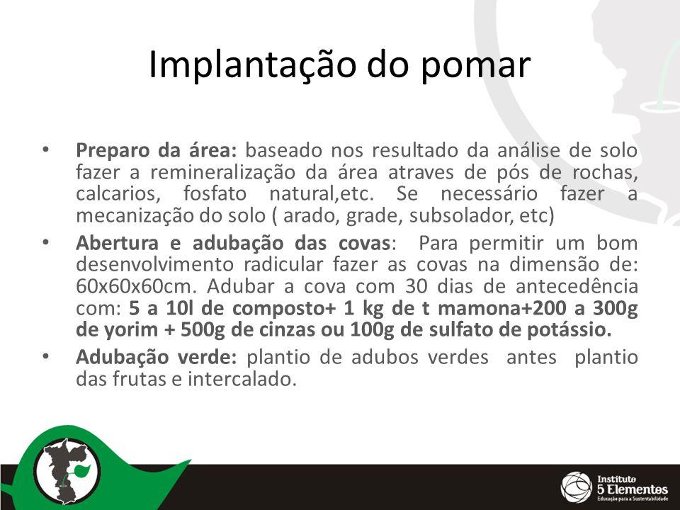 Implantação do pomar