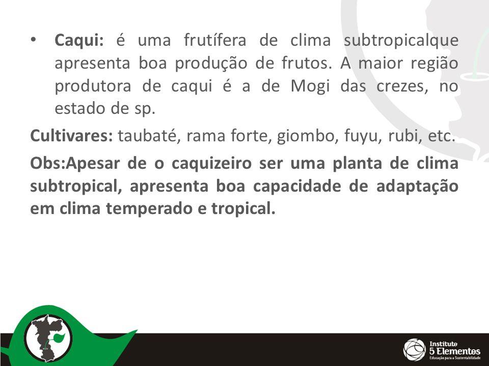 Caqui: é uma frutífera de clima subtropicalque apresenta boa produção de frutos. A maior região produtora de caqui é a de Mogi das crezes, no estado de sp.