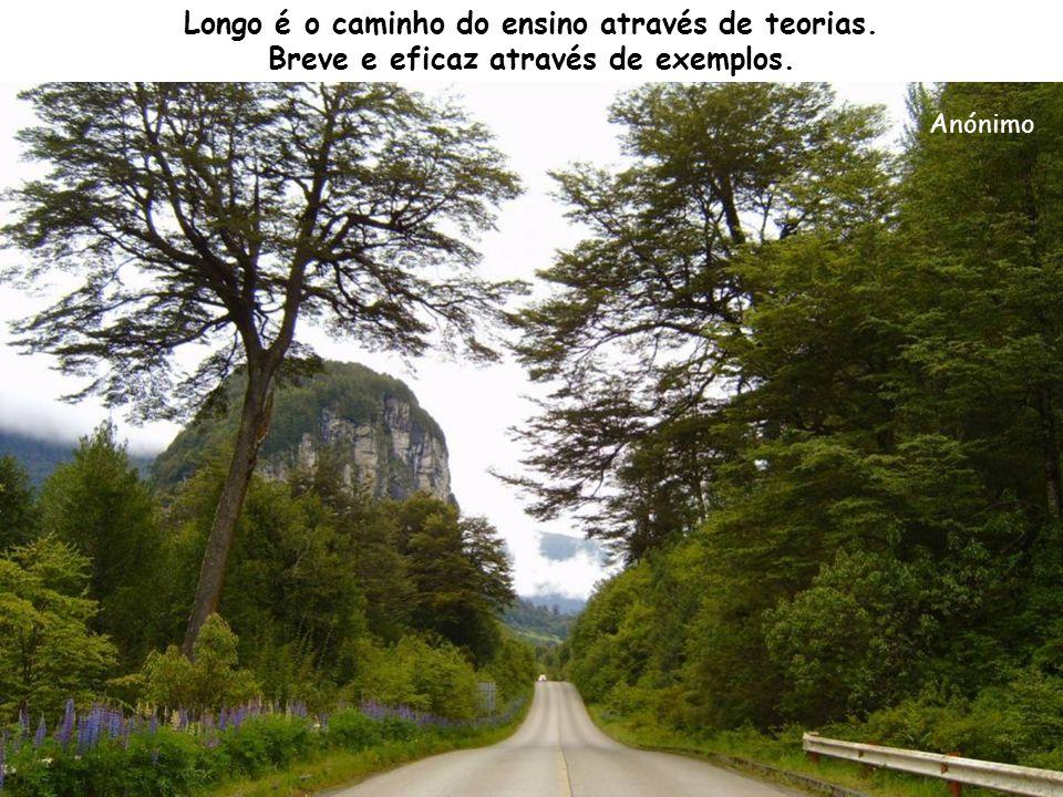 Longo é o caminho do ensino através de teorias.