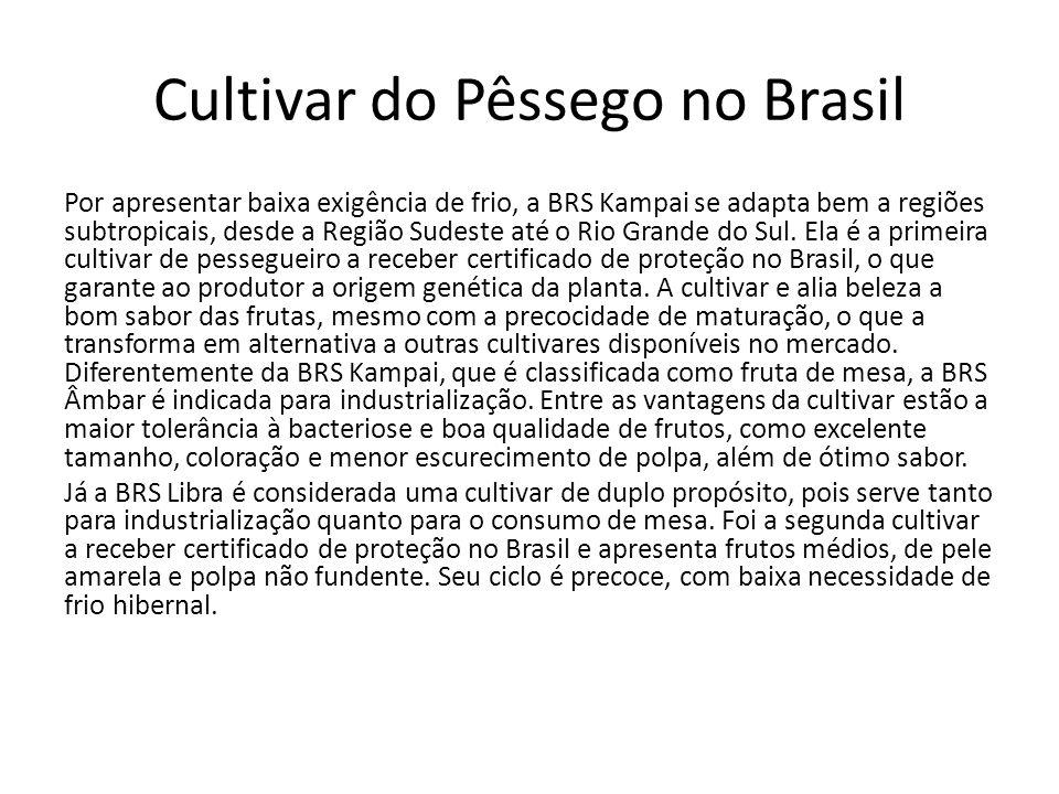 Cultivar do Pêssego no Brasil