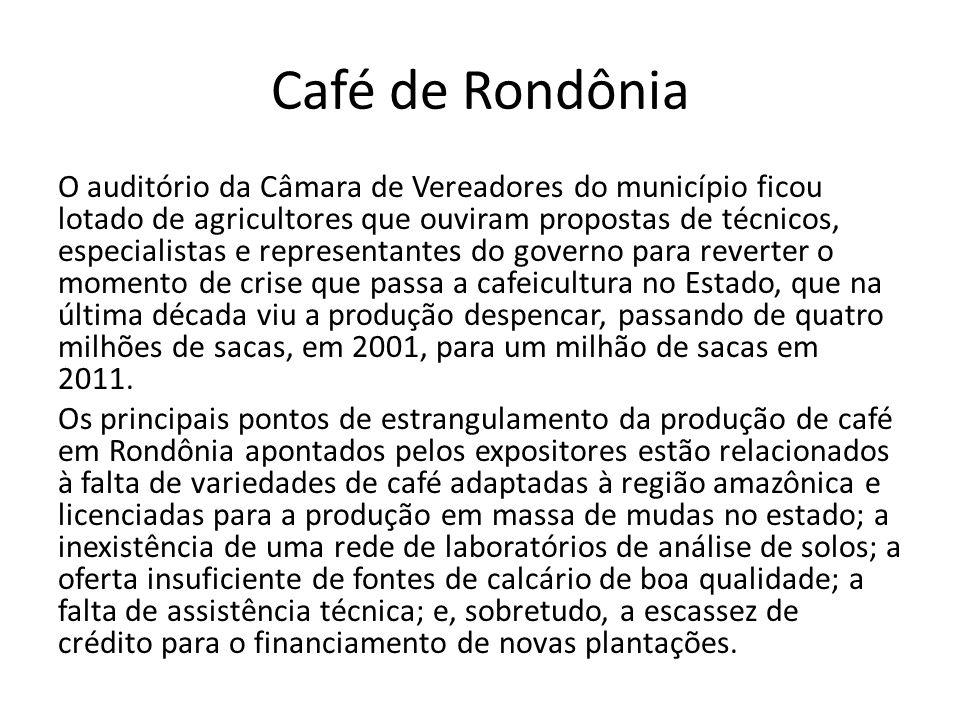 Café de Rondônia