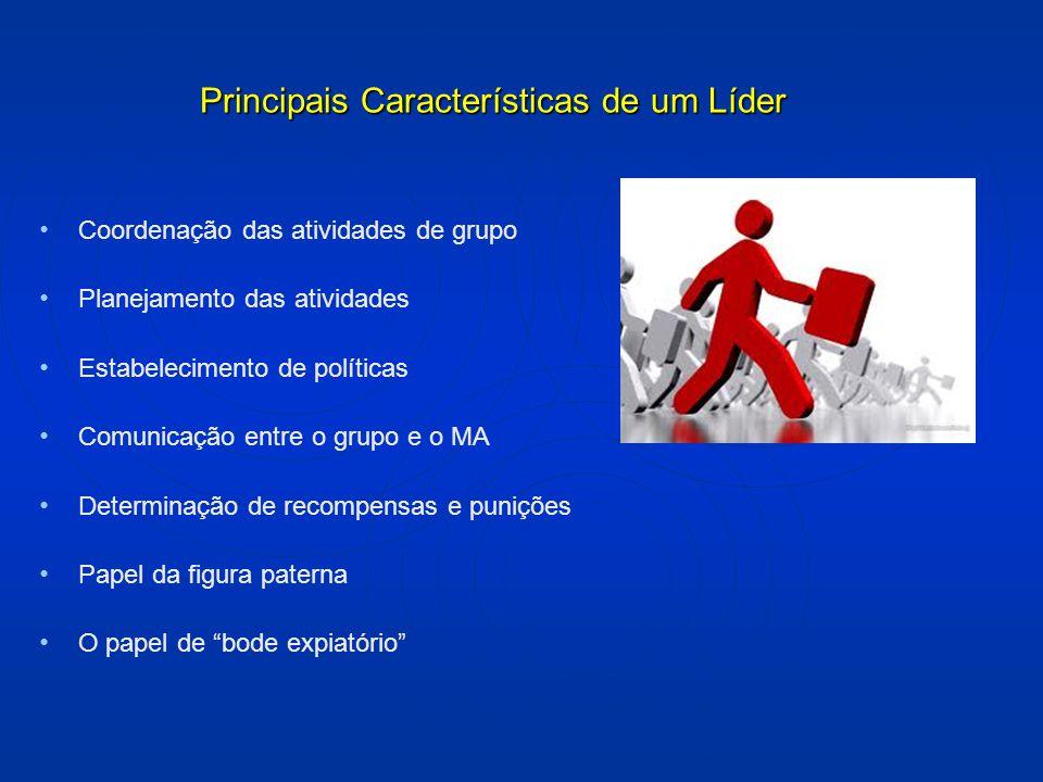 Principais Características de um Líder