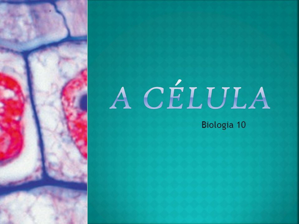 A Célula Biologia 10