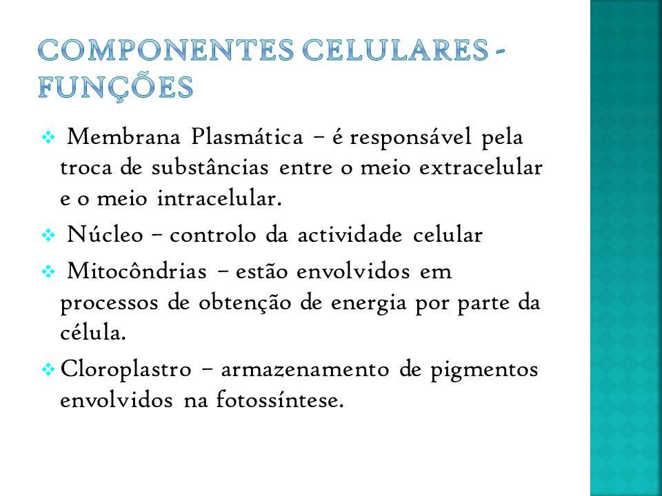 Componentes Celulares - Funções