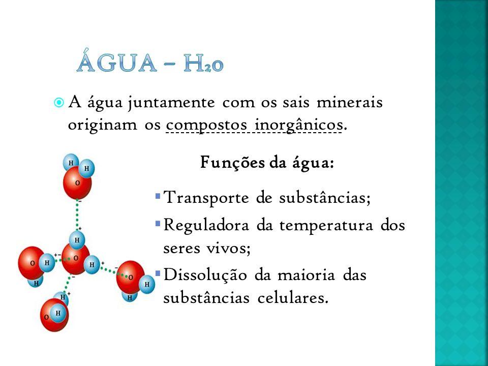 Água – H20 A água juntamente com os sais minerais originam os compostos inorgânicos. Funções da água: